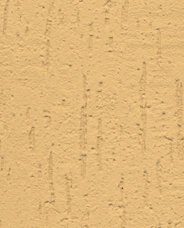 Cea Mai Buna Tencuiala Decorativa Exterior.Graffiato Structură Scoarță De Copac Tencuiali Decorative